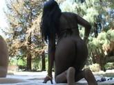 Ebony chick fucks doggystyle outdoors