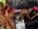 Ebony girl gets a meat pole in her hole.