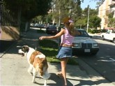 slut flashes while walking her dog