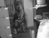 Security Cam Catches Two Employees in Storage Room